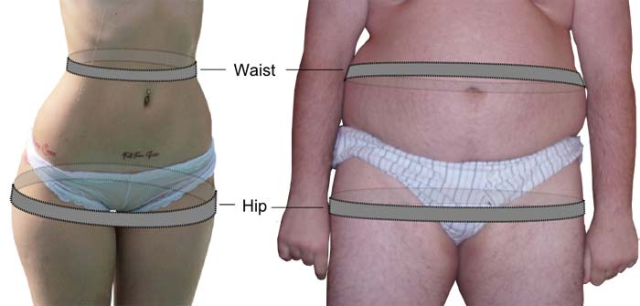Illustration of waist to hip ratio measurements