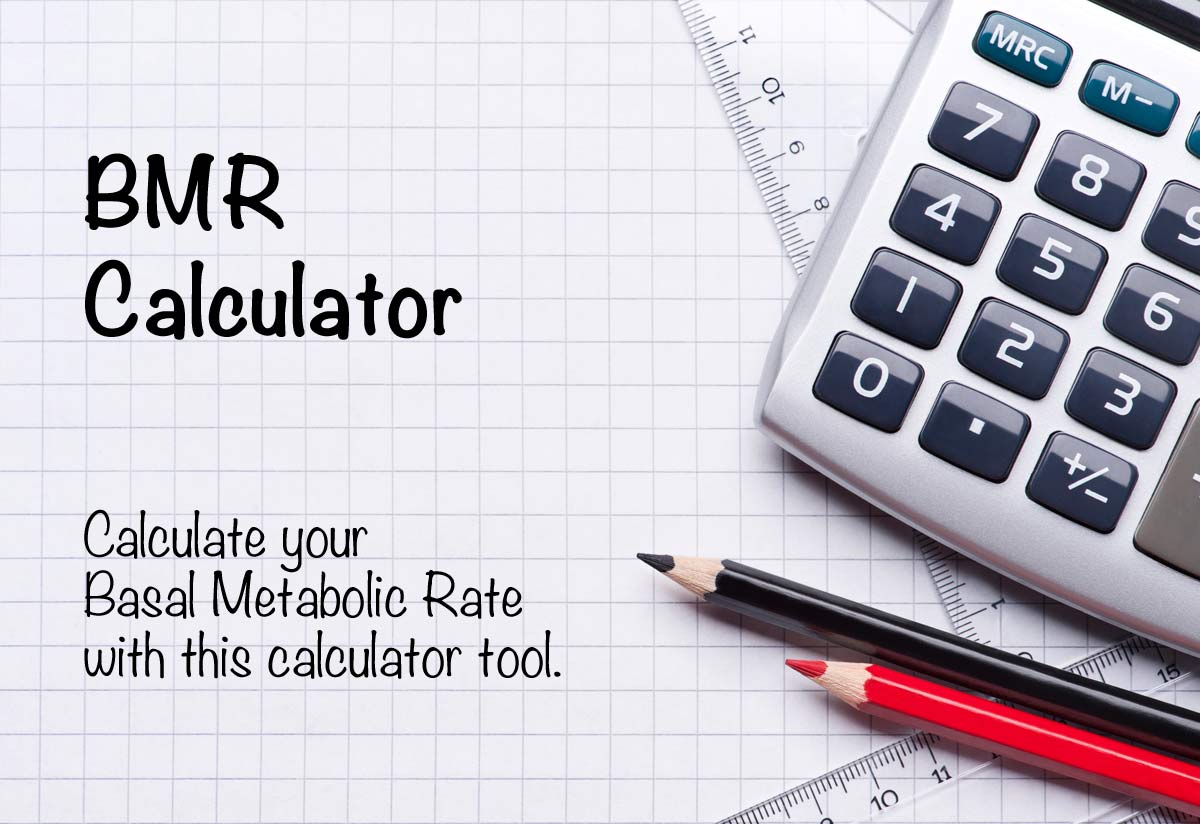 Image result for bmr calculator
